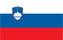 Slovenia-Football-Agency